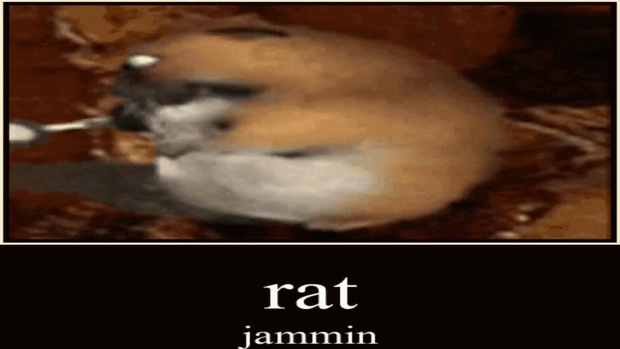 Jammin