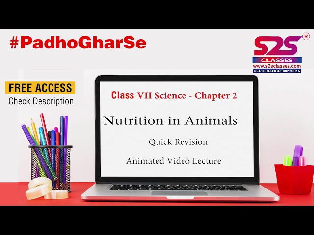 Class 7 Science - Nutrition in Animals | Animated Videos | S2S Classes | Quick Revision |