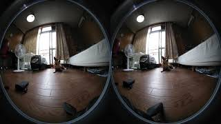 わんちゃん Mirage Camera 180 VR Stereo