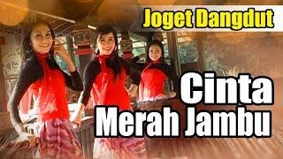 Gambar cover CINTA MERAH JAMBU BEST DANGDUT NOSTALGIA TERLARIS