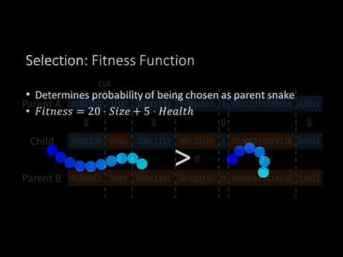 Snakes, Neural Networks and Genetic Algorithms