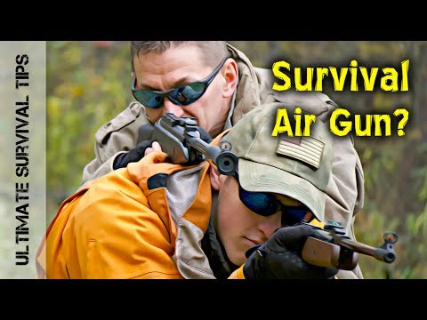 .22 Caliber AIR RIFLE - 11 REASONS YOU NEED One - for Survival and FUN