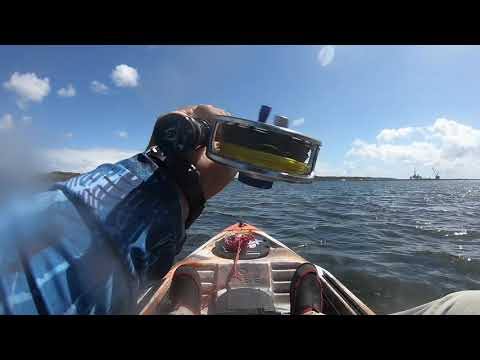 FLY FISHING BARRACUDA WITH MAXCATCH