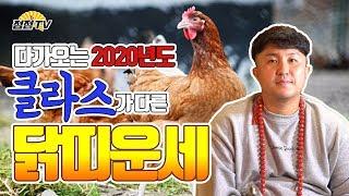 [인천점집] 2020년 닭띠운세! 원래라면옥황상제님께 뒤지게 맞아야할 천기누설이야! 그래도 알려준다~!![신…