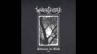 WaldgeflĂźster - Stimmen im Wind 2020 (Full Album)