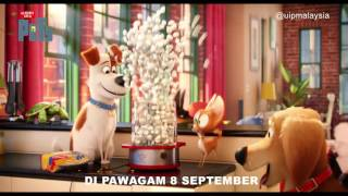 THE SECRET LIFE OF PETS l SPORTS l 8 SEPT