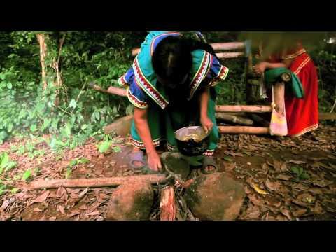 Isla Palenque, Panama   The Island Interns   A Day with Panama's Ngobe Bugle