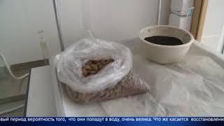 Жители посёлка говорят что испортили здоровье из-за местной птицефабрики