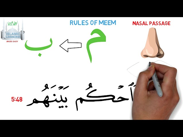 Tajweed Made Easy - The Letter Meem