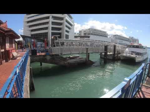 Auckland City Tour 2019 - New Zealand | 4K
