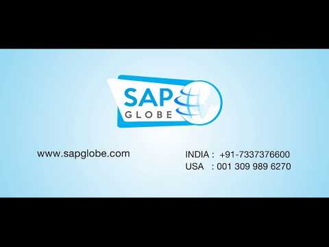 SAP Globe - Top & Best SAP Course Training Institute in Hyderabad,Madhapur,India