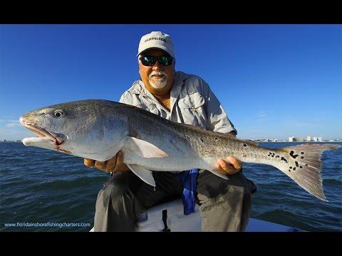 Ponce Inlet New Smyrna Beach Bull Redfish