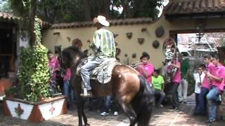 Caballo Bailándole a los Venados de Mazatlán El Quelite 2013