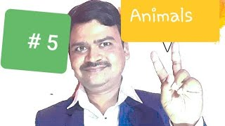 Names of animals | Vocabulary building | Animal in English