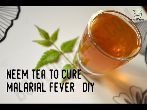 How To Make Neem Tea To Cure Malaria - Remedy | Bowl Of Herbs thumbnail