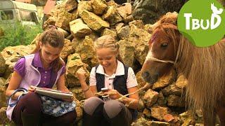 Ponyhilfe.de (Folge 46) | Tiere bis unters Dach | SWR Kindernetz