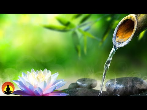 🔴 Relaxing Music 24/7, Calming Music, Meditation, Sleep, Spa Music, Healing Music, Study, Zen, Spa