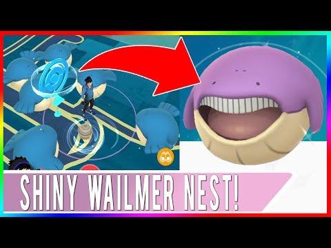 BEST SHINY WAILMER NEST LOCATION IN THE WORLD! Pokemon GO Shiny Wailmer Hunting!