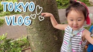 🍒 도쿄일상 • 유치원 도시락싸고 마트 장보고 택배언박싱 | 스키야키 만들어먹는 일상 🍲