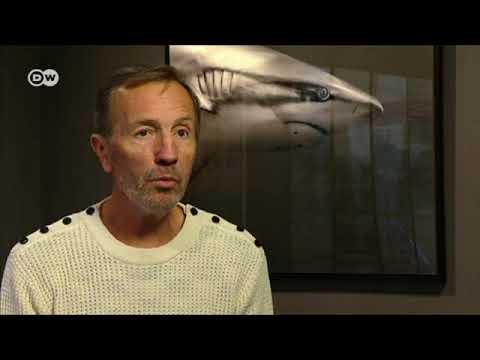 مصور أسماك القرش | يوروماكس  - نشر قبل 2 ساعة