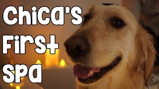 CHICA'S FIRST SPA thumbnail