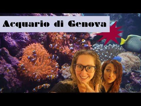 Travel Vlog Italy | Liguria: Genova Parte 1 - L'acquario di Genova HD