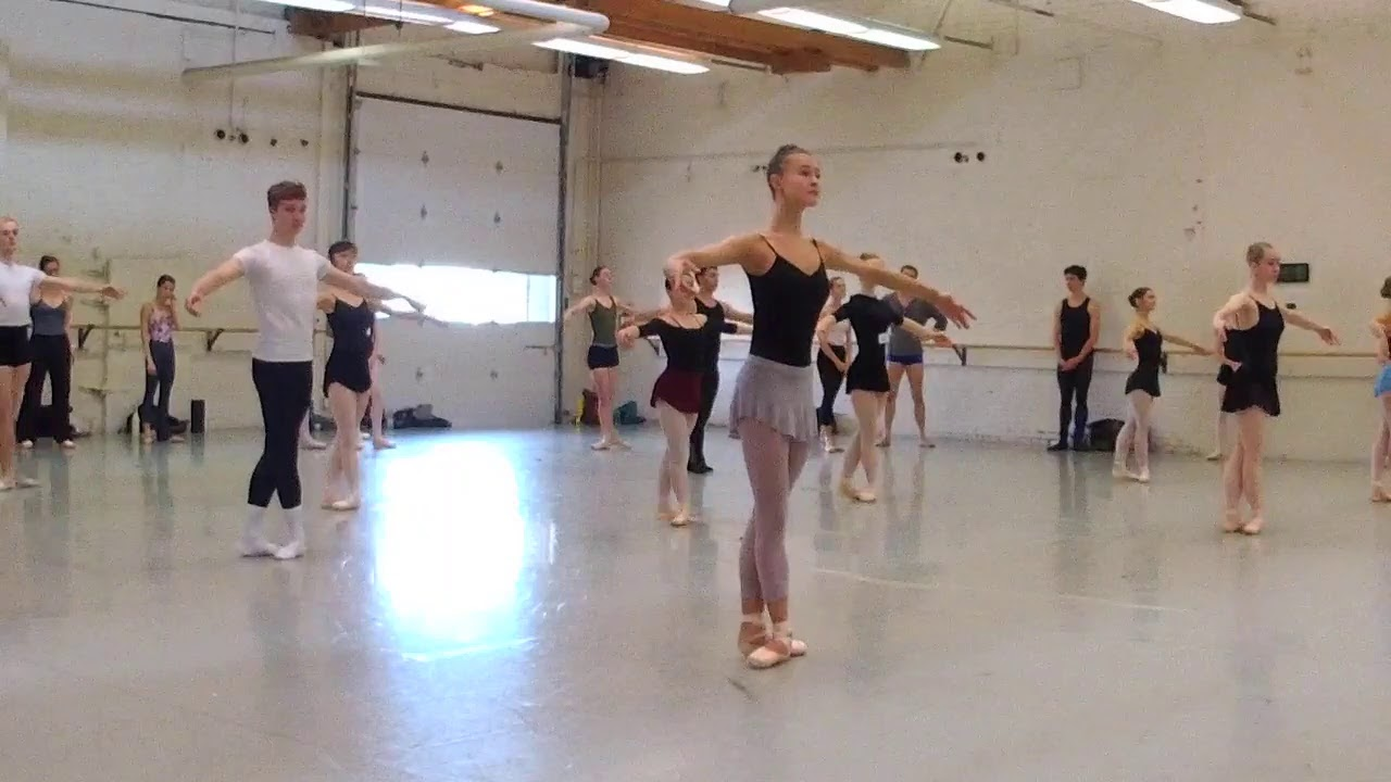 Ballet and Dance Summer Intensive Program | BalletMet