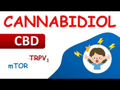 Cannabidiol For Treatment Of Epilepsy