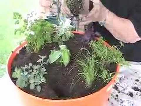 Container Herb Garden - Container Gardening-Insightful Nana - YouTube