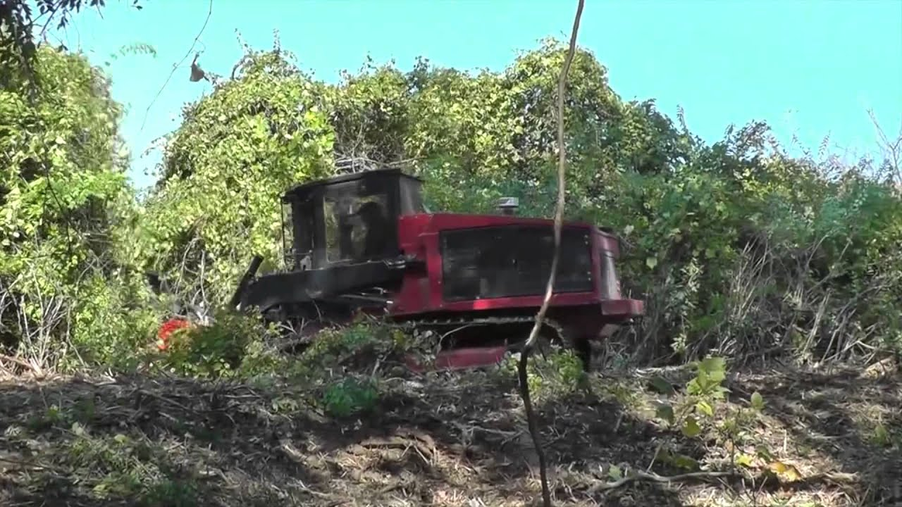 Forestry & Mulching | LSR Enterprise | Weatherford Texas | Buy, Sell