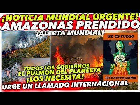 NOTICIA QUE AFECTA A TODO EL MUNDO! PULMÓN DEL MUNDO EN LLA MAS #AMAZONAS