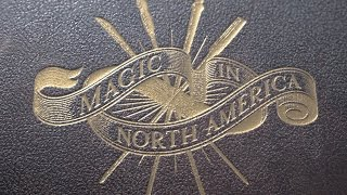 Fantastic Beasts and Where to Find Them - History of Magic In North America HD