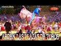 ¡¡ARDEN LAS PLAZAS DE TOROS!! DONDE SE PRESENTAN LOS TOROS DE RANCHO EL GUAMÚCHIL EN HUECORIO, MICH.