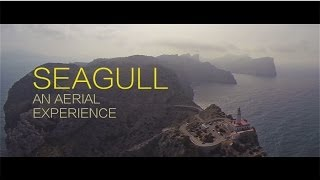 SEAGULL | Aerial Shots Of Mallorca (HD)