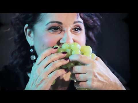 ROBERTA CAPPELLETTI - LA BOTTEGA - COME AI VECCHI TEMPI (OFFICIAL VIDEO)