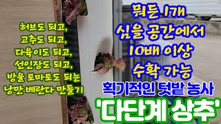 [엽기] [신기한 영상 1탄] 아파트 상추 ??? 이거…