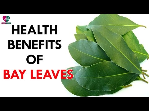 Health Benefits of Bay Leaves - health Sutra