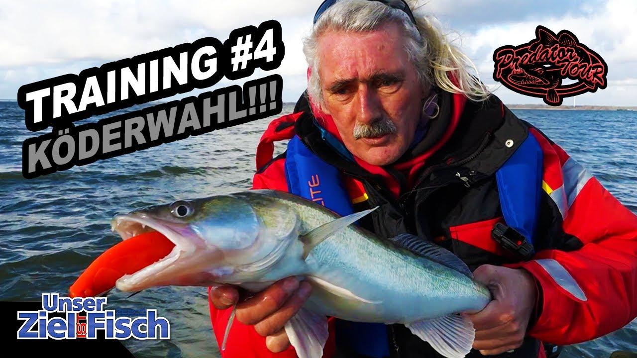 GROßE KÖDER: DICKE ZANDER - Training #4 Predatortour - Jörg Ovens -Unser Ziel ist Fisch-Angelschule