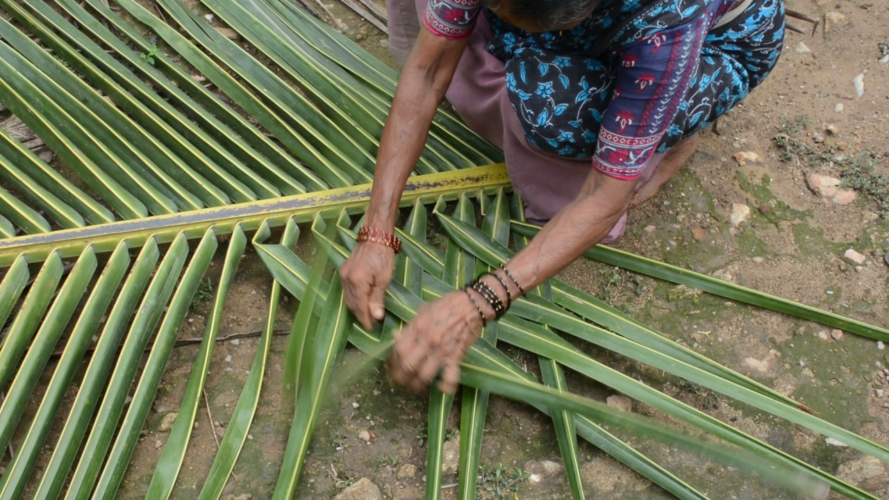 How To Weave Coconut Leaf For Making House Walls Hd