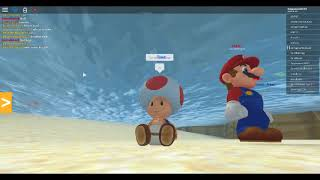 Playing Super Mario Online in Roblox with another Youtuber