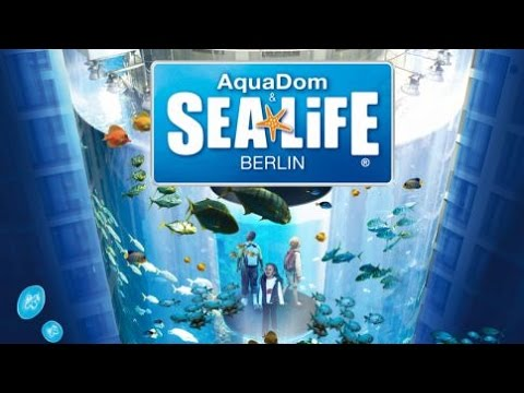 sealife berlin 2016 youtube. Black Bedroom Furniture Sets. Home Design Ideas