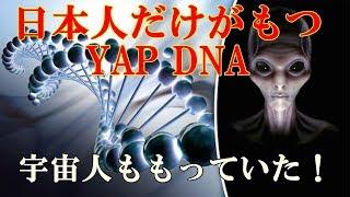 【衝撃】「YAP」遺伝子。日本人だけが持つ最強の遺伝子、是国政府も恐れるその潜在能力とは