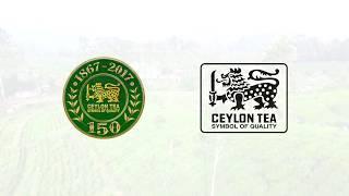 Tea protects your teeth! - Ceylon Tea 150th Anniversary segment