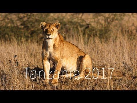 Tanzania 2017 - Tarangire, Lake Manyara, Ngorongoro, Serengeti