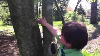 Connor Gerard egg hunt