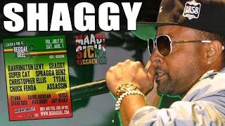 Shaggy feat. Rayvon - Angel @Reggae Geel 2015