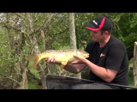 Pellet Waggler Fishing with Steve Ringer