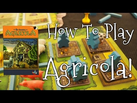 "A Dicey ""Walkthrough Review"" of Agricola!"