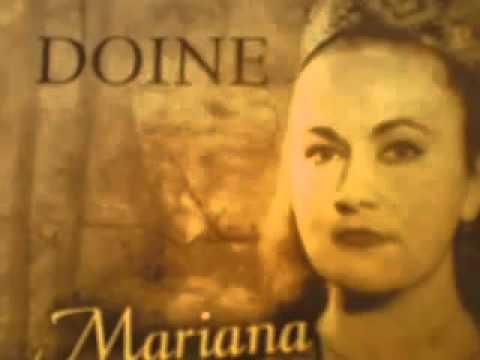 Mariana Draghicescu Salcuta cu creanga n apa Doina