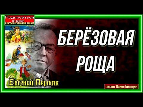 Берёзовая роща Евгений Пермяк читает Павел Беседин